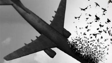 تصویر از آخرین خبرها از پرواز ناتمام شماره ۷۵۲/ از پیدا شدن فیلم پرتاب دو موشک پدافندی تا اعلام لیست ۱۲۴ پیکر شناسایی شده