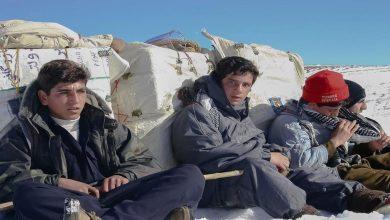 تصویر از روزنامه ایران خبر داد: سن کولبری در برخی مناطق به ۱۳ سال رسیده!