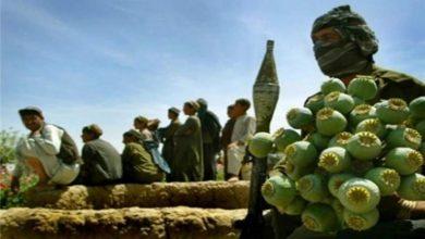 تصویر از طالبان چه راههای عمدهای برای تامین منابع مالی دارد؟