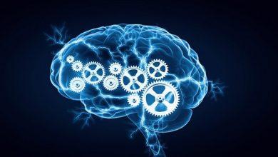 تصویر از ۹ توصیهی علمی برای تقویت حافظه و تقویت مغز