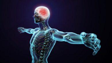 تصویر از راههای افزایش متابولیسم بدن | چطور متابولیسم را افزایش دهیم؟