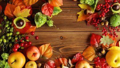 تصویر از خواص میوهها | ۱۰ میوهی خوشطعم و مفید برای سلامت بدن