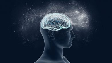 تصویر از چرا برخی واژگان بهتر از بقیه در حافظه میمانند؟ | راز حافظهپذیریشان چیست؟
