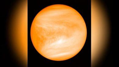 تصویر از کشف حیات در سیاره زهره حقیقت دارد؟