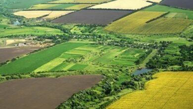 تصویر از اراضی کشاورزی کشور در غفلت و فراموشی مسئولین در حال نابودی هستند