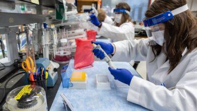 تصویر از فرآیند ساخت و تایید واکسن یک بیماری مثل کرونا به چه صورت است؟