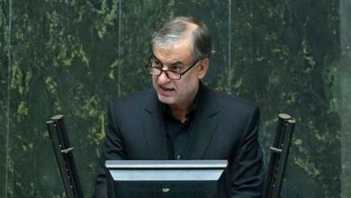 تصویر از نماینده مجلس: احمدی بیغش باید تنبیه شود!