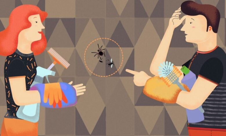 جلوگیری از ورود حشرات به خانه