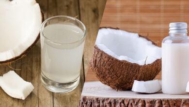 تصویر از تفاوت آب نارگیل و شیر نارگیل در چیست؟