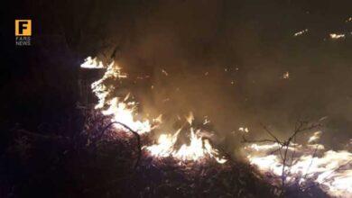 تصویر از جدیدترین جزئیات آتش سوزی پارک ملی گلستان + عکس