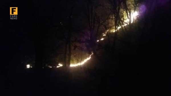 آتش سوزی پارک ملی گلستان