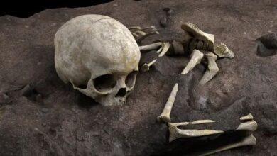 تصویر از باستانشناسان قدیمیترین قبر انسان در آفریقا را کشف کردند