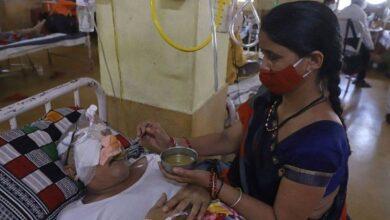 تصویر از قارچ سیاه | هند نزدیک به ۹۰۰۰ مورد عفونت نادر را گزارش میکند