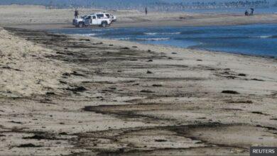 تصویر از نشت نفت در ساحل هانتینگتون کالیفرنیا باعث نگرانی حیات وحش شده است.